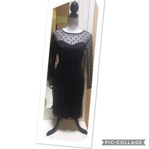 Eva Franco ModCloth Coconinno Pinup Dress M♥️